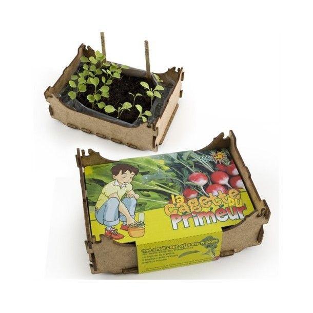 Cagette pour radis et roquette